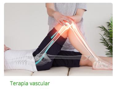 Terapia Vascular